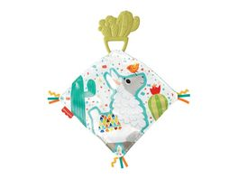 Fisher Price Kaktus Beissring Kuscheltuch Baby Spielzeug Schnuffeltuch