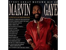 Every Great Motown Hit Of Marvin Gaye Vinyl