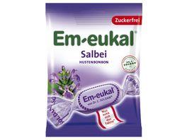 Em eukal Salbei 75 g zuckerfrei