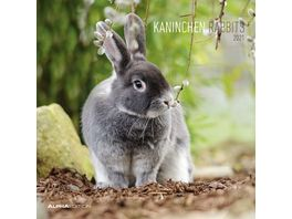 Alpha Edition Bildkalender Kaninchen 2021 30x30cm