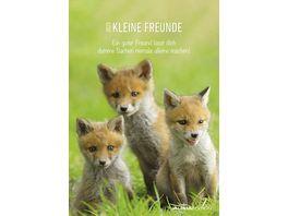 Alpha Edition Bildkalender Niedliche Igelbabys 2021 24x34cm