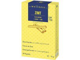The Wellness Co Zimt Ginseng Chrom Zink