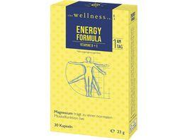 The Wellness Co Energy Formulavitamine B E