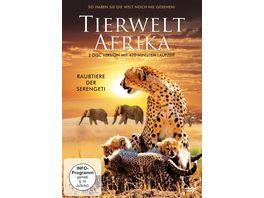 Tierwelt Afrika Raubtiere der Serengeti 2 DVDs