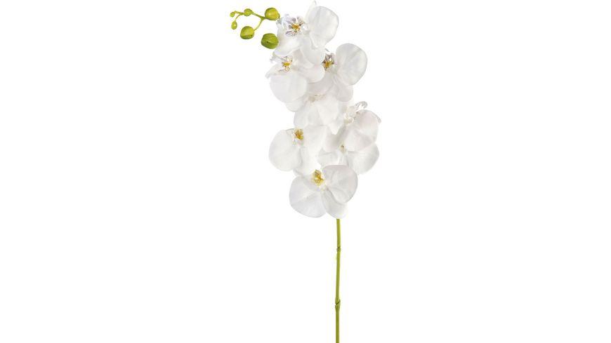 "GILDE Deko Orchidee ""Satin"", 106cm"