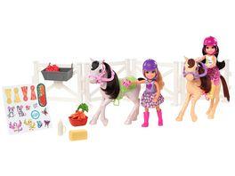Mattel Barbie Chelsea Ponyhof Spielset mit 2 Chelsea Puppen 2 Ponys und Zubehoerteilen