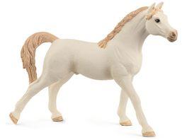 Schleich 72153 Horse Club Araber Hengst weiss