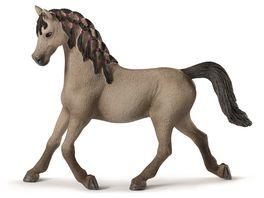 Schleich 72154 Horse Club Araber Stute grau