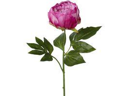 Peonie Cerise 58 cm
