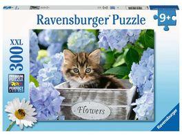 Ravensburger Puzzle Kleine Katze 300 XXL Teile