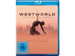 Westworld Staffel 3 3 BRs