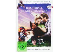 Das grosse Hundevergnuegen 3 tierische Abenteuer auf 4 Pfoten 3 DVDs