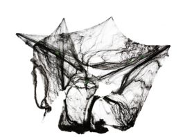 Rubies 62327 Spinnennetz schwarz 60g mit 4 Spinnen