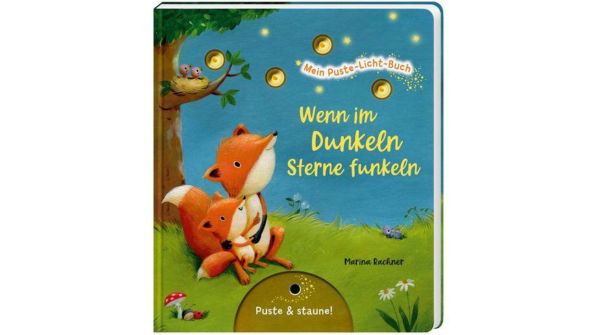 Mein Puste-Licht-Buch: Wenn im Dunkeln Sterne funkeln - Gute-Nacht-Buch mit Puste-Licht und LED-Lämpchen, Mitmachbuch für Kinder ab 18 Monaten