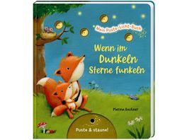 Mein Puste Licht Buch Wenn im Dunkeln Sterne funkeln Gute Nacht Buch mit Puste Licht und LED Laempchen Mitmachbuch fuer Kinder ab 18 Monaten