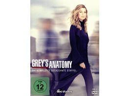 Grey s Anatomy Die komplette sechzehnte Staffel 6 DVDs