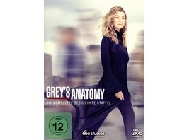 Grey s Anatomy Staffel 16 6 DVDs