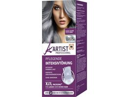 ARTIST Professional Pflegende Intensivtoenung Silbergrau 111 Level 2