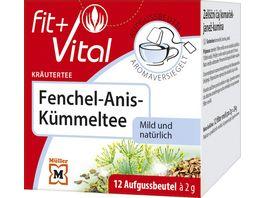 FIT VITAL Kraeuter Tee