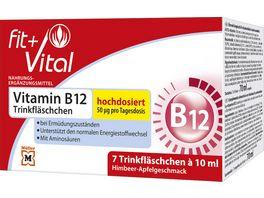 Fit Vital Vitamin B12 Kur