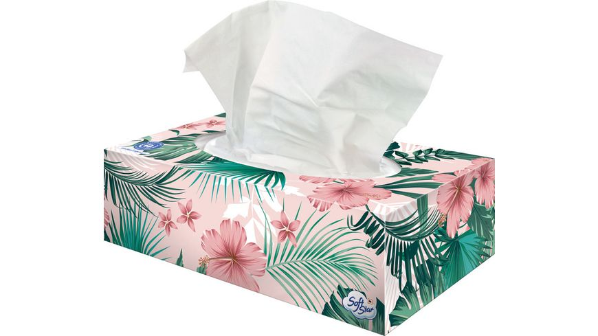 SoftStar Recycling-Taschentücher-Box, 4-lagig