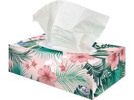 SoftStar Recycling Taschentuecher Box 4 lagig
