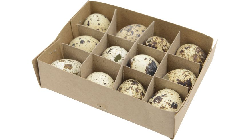 Wachtel-Eier natur 12 Stück
