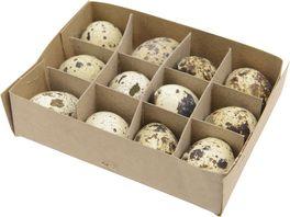 Wachtel Eier natur 12 Stueck