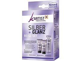 ARTIST Professional Silber Glanz Reise Set
