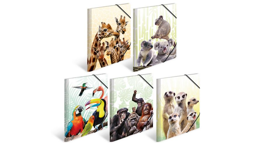 HERMA Sammelmappe A3 Exotische Tiere sortiert