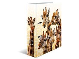 HERMA Motiv Ordner A4 Exotische Tiere Giraffenfreunde
