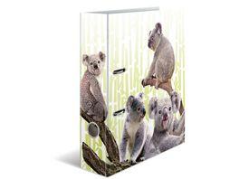 HERMA Motiv Ordner A4 Exotische Tiere Koalafamilie