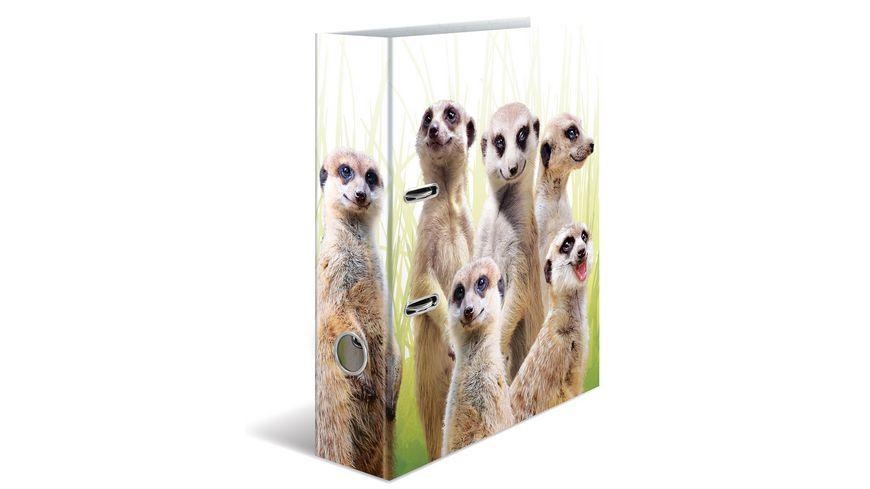 HERMA Motiv-Ordner A4 Exotische Tiere - Erdmännchentruppe