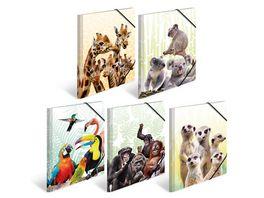 HERMA Sammelmappen A4 Exotische Tiere sortiert