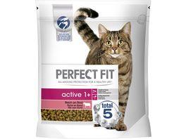 PERFECT FIT Katze Beutel Active 1 mit Rind 1 4kg