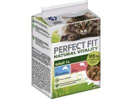 PERFECT FIT Katze Portionsbeutel Natural Vitality Adult 1 mit Hochseefisch und mit Lachs Multipack