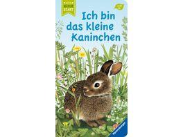 Ich bin das kleine Kaninchen Kinderbuch