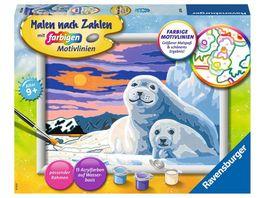 Ravensburger Beschaeftigung Malen nach Zahlen 28779 Niedliche Robben Kinder ab 9 Jahren