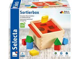 Selecta Holzspielzeug Kleinkindwelt Sortierbox 14 cm 62005