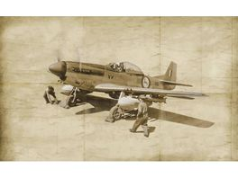 Italeri 1 72 F 51D Korean War 510001452