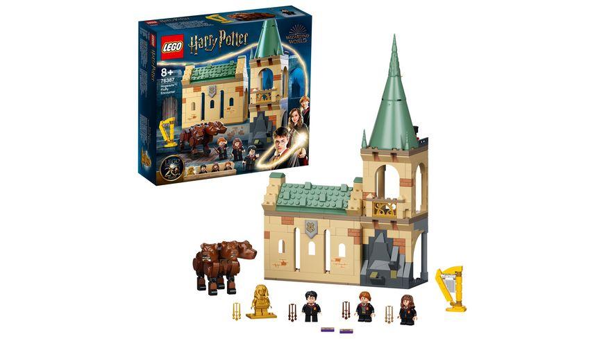 LEGO Harry Potter 76387 Hogwarts: Begegnung mit Fluffy Set, Spielzeug