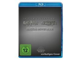 Wizarding World 10 Film Collection Jubilaeums Edition Magical Movie Mode 11 BRs