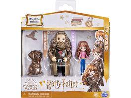 Spin Master Wizarding World Harry Potter Freunde Spielset mit Hermine Granger und Rubeus Hagri