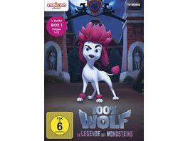 100 Wolf Die Legende des Mondsteins Staffel 1 1 Folgen 1 13 2 DVDs
