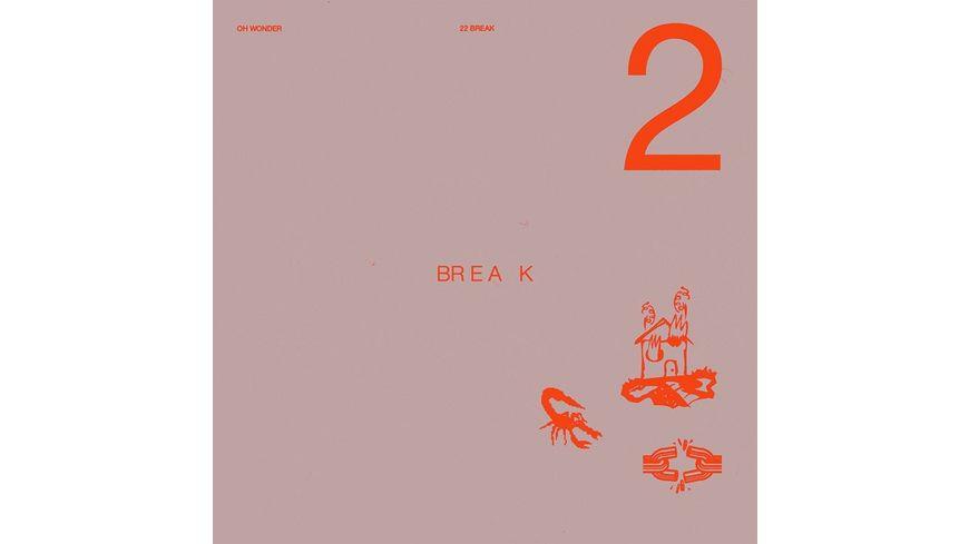 """22 Break (Ltd.Edt.12"""" Vinyl)"""