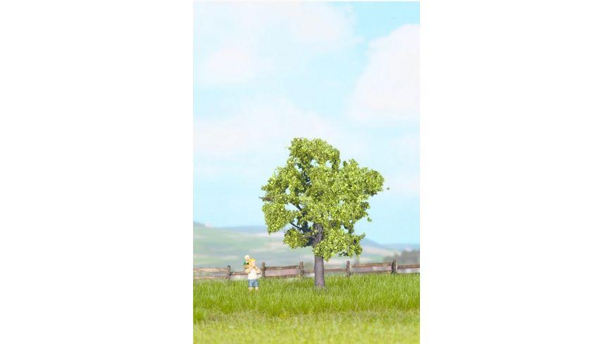 Noch Obstbaum gruen