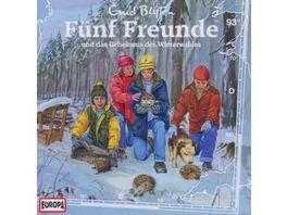 093 Und Das Geheimnis Des Winterwaldes