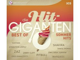 Die Hit Giganten Best of Sommerhits