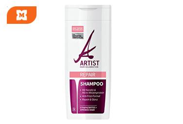 Artist Shampoo