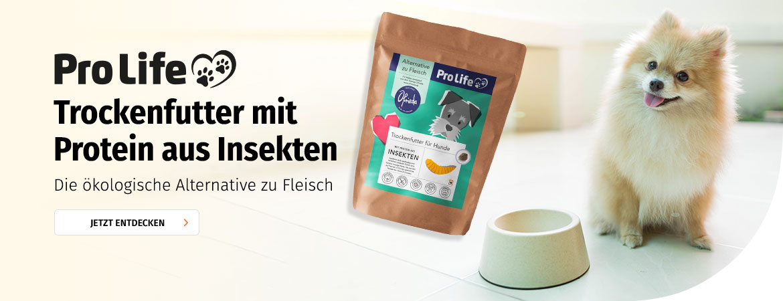 Hundefutter aus Insektenprotein bei Müller